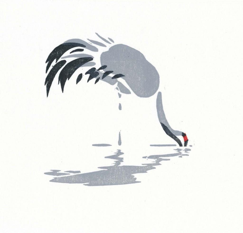 drinkende kraanvogel